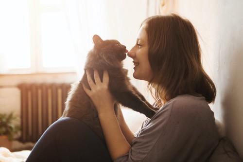女性に抱き抱えられて鼻を舐める猫