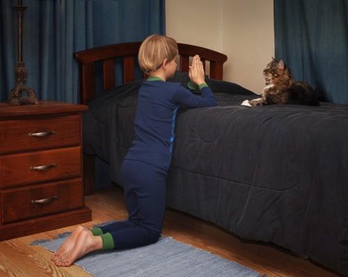 猫にお祈りする男の子