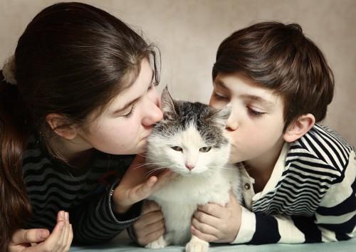猫にキスをする兄妹
