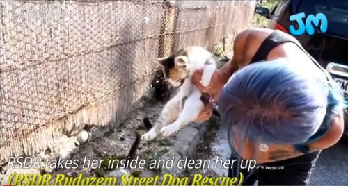 猫を抱える女性