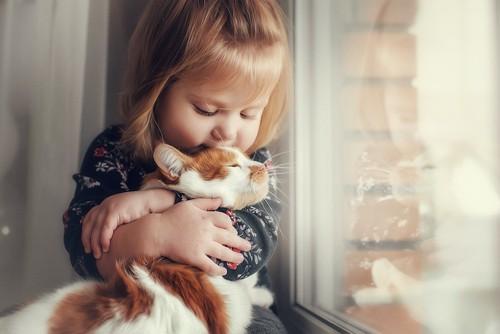 窓辺で子供に抱きしめられる猫