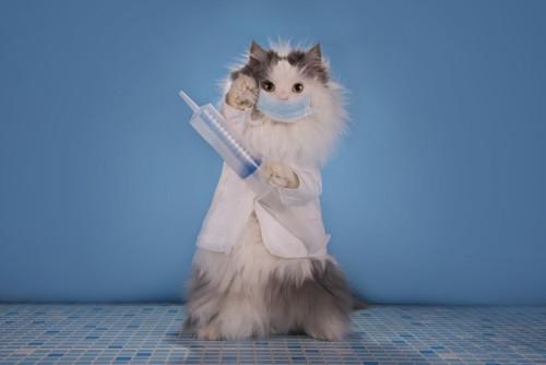 注射器を持ってマスクをした猫