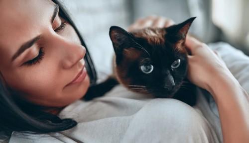 猫を抱いて見つめる飼い主
