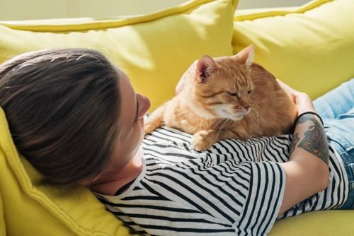 女性のお腹の上の猫