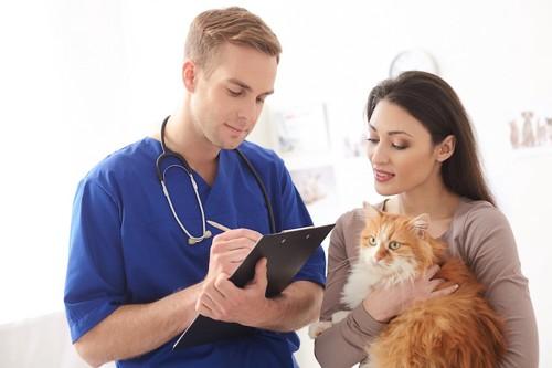 獣医師から問診を受けている猫の飼い主