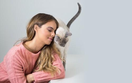 女性の顔に身体を擦り寄せる猫