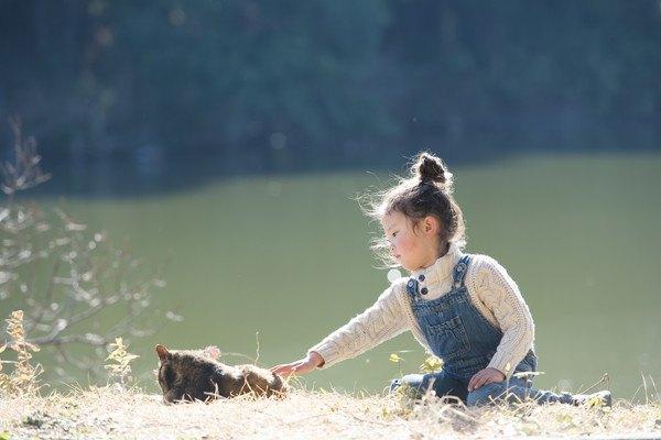 猫と遊ぶ少女
