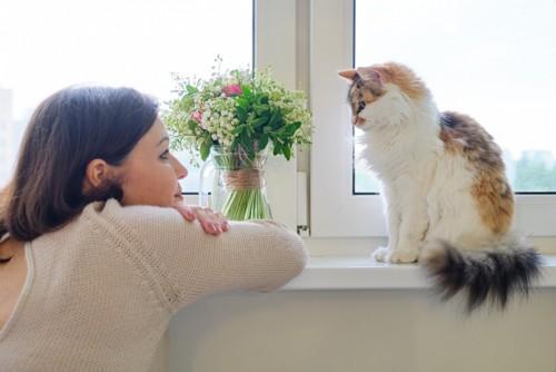 猫と見つめあう女性