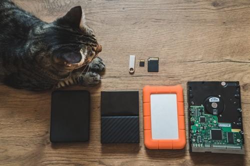 猫とSDカード
