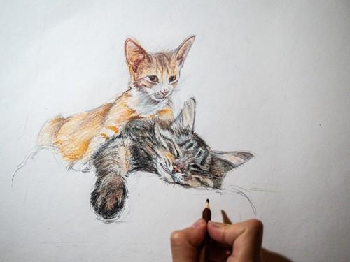 猫の絵を描く人の手