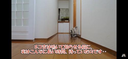 ドアの前で待つ