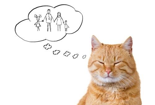 目を閉じて家族を考えている猫
