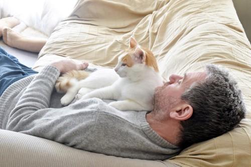体の上で眠る猫