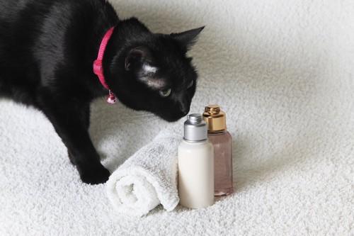 スキンケア用品の匂いを嗅ぐ黒猫