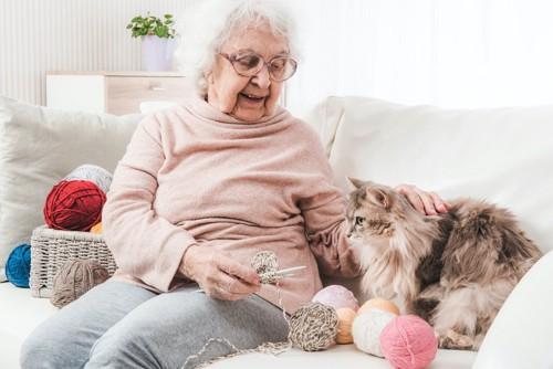 ソファーに座って猫を撫でる高齢の女性