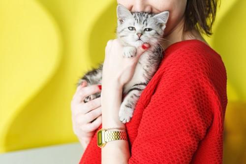 赤い服を着た女性に抱かれた子猫