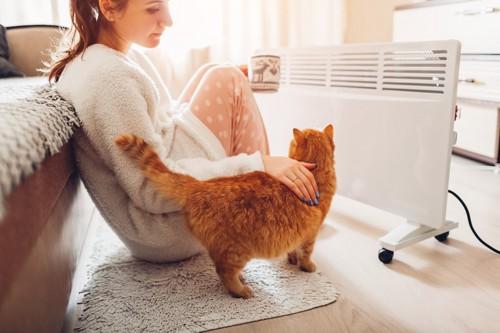 暖房の前の女性に近づく猫