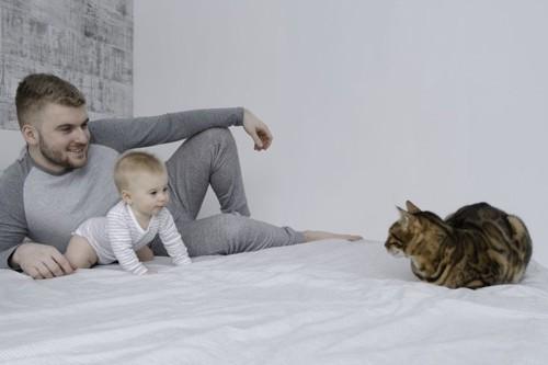 人の親子と猫