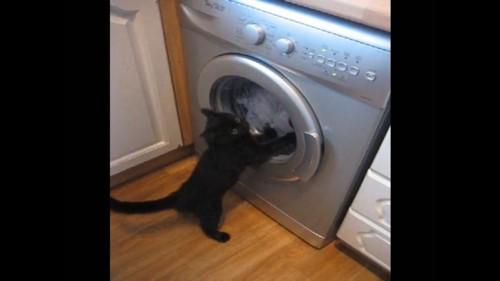 止まる洗濯機