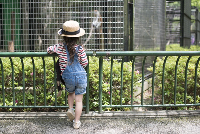 動物園 女の子