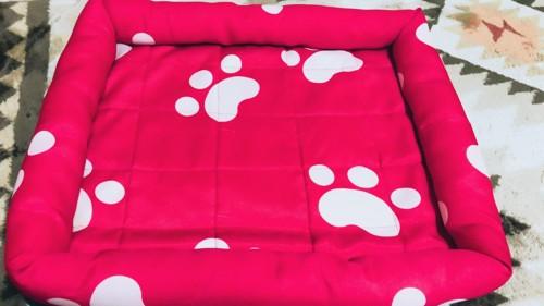 市販の猫ベッド