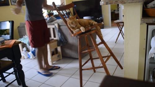 椅子の固定ができそう