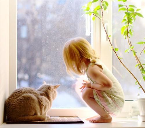 窓から外を覗く女の子と猫の写真