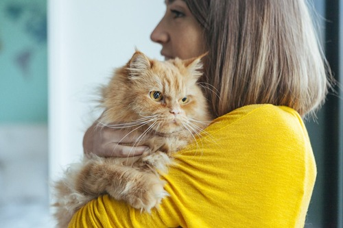 不機嫌そうな顔の猫を抱く女性