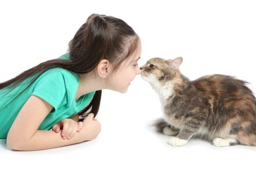 顔を近づける猫と女の子