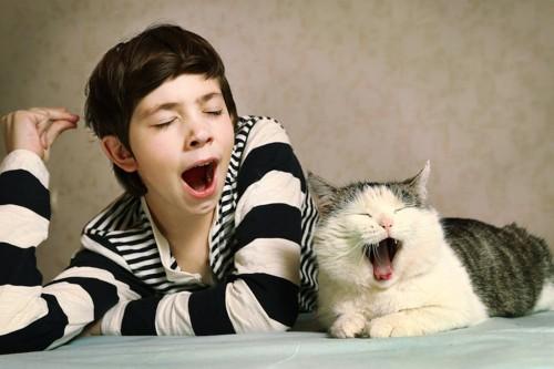 並んであくびをする男の子と猫