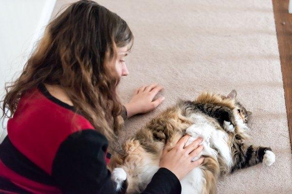 猫のお腹を撫でる女性