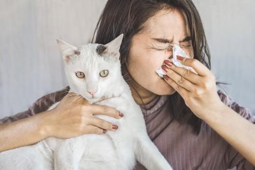 鼻をかむ人と猫
