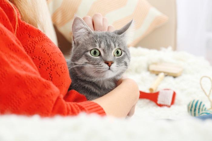 女性に抱かれる猫、背景にブラシ