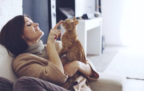 女性に鼻をつんとされる子猫