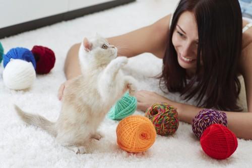 猫と毛糸で遊ぶ女性