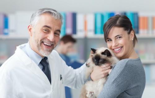 男性獣医師と猫を抱いた女性の飼い主