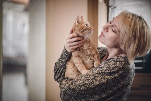 親密な猫と飼い主