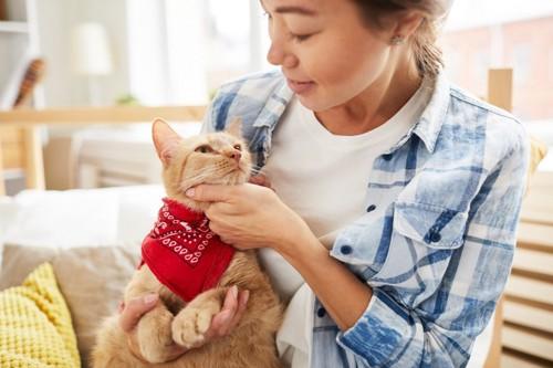 バンダナをした猫と女性