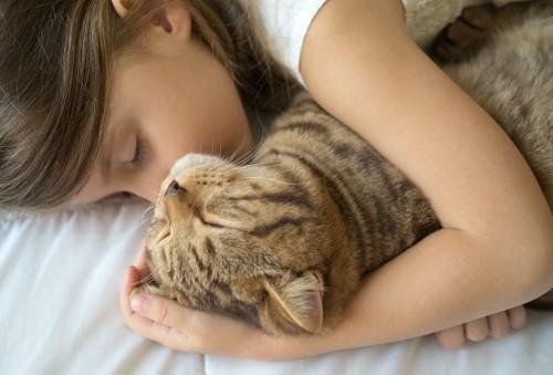 女の子に抱きしめられて一緒に寝ている猫