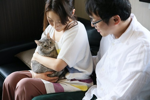 ソファーに座って猫を抱く女性と見守る男性