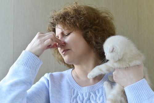 猫を手に鼻をつまむ人