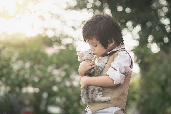 子どもに抱っこされる子猫