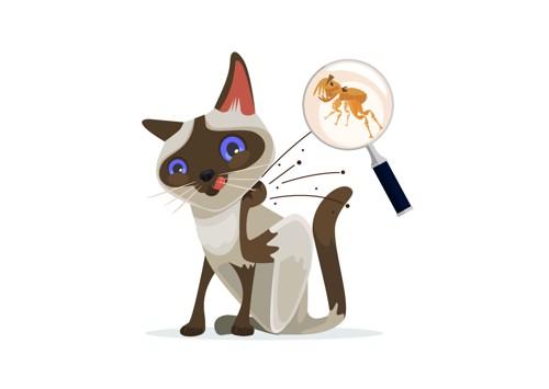 ダニがいて体を掻く猫のイラスト