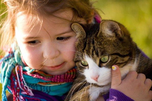 子供に抱っこされる猫