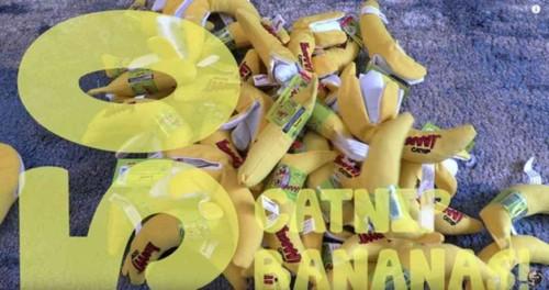 バナナの形の猫用おもちゃ