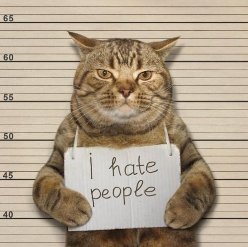 人間嫌い(?)な猫