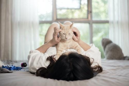 寝ている飼い主の胸の上で撫でられている猫