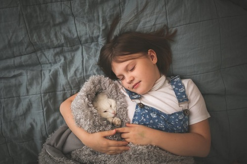 ブランケットに包まれて女の子と一緒に眠る子猫