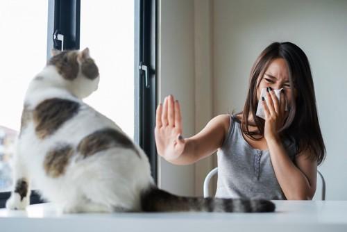 鼻をハンカチで抑える女性と猫