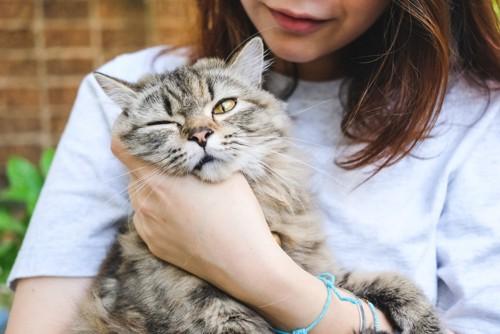 抱っこされて不満そうな猫